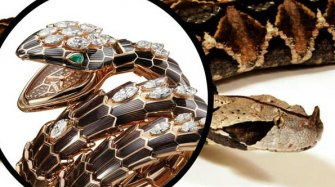 The eternal rebirth of Serpenti Trends and style