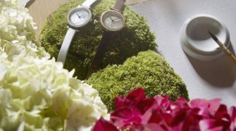 Video. Hortensia collection