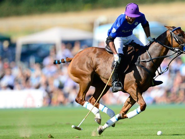 Piaget - The Pieres brothers win the Gold Cup